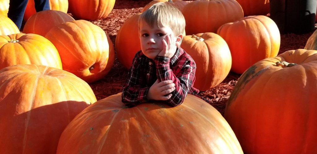 fall decor pumpkins decor ideas acorns candy corn decorating